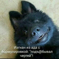 OSO Пантериус