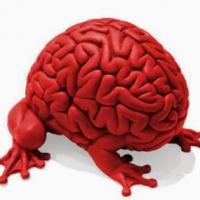 Мозгожуйка