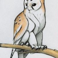 Henk Owlheart