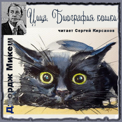 Цица. Биография кошки