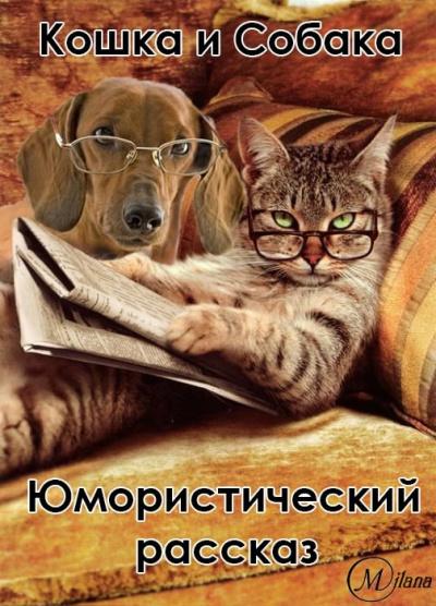 Про кошку и собаку