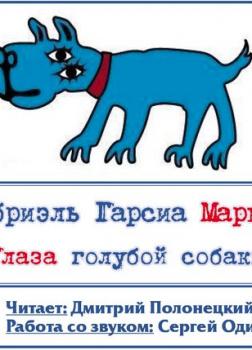 Глаза голубой собаки