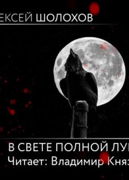 В свете полной луны