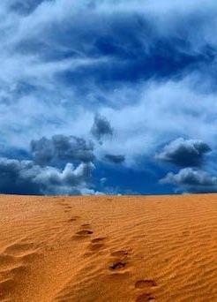 Мудрость песков. Беседы о суфизме. Том 1