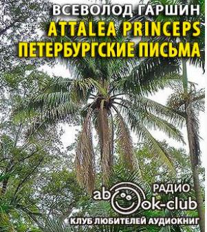 Аttalea princeps. Петербургские письма
