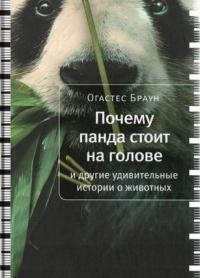 Почему панда стоит на голове и другие удивительные истории о животных
