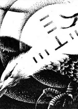 Птица и мечтатель