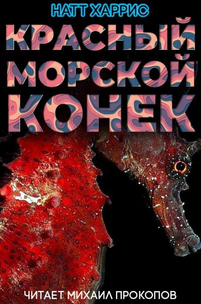 Красный морской конёк