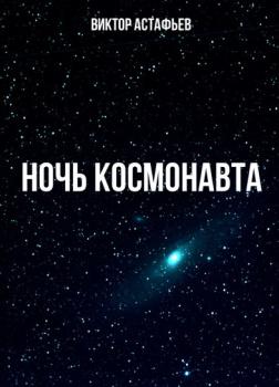 Ночь космонавта