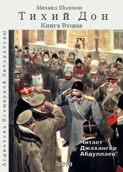 Тихий Дон. Книга 2