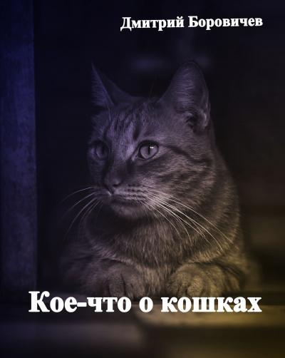 Кое-что о кошках