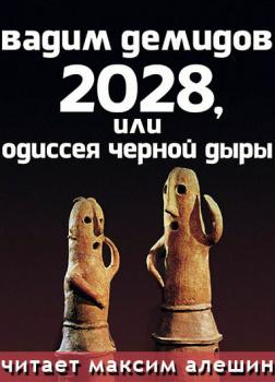 2028, или Одиссея Черной Дыры